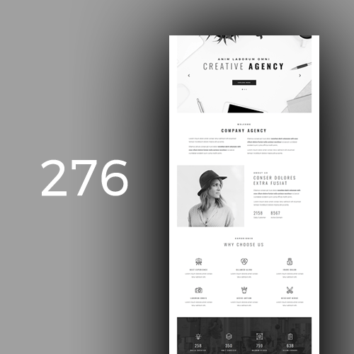 Agency 6